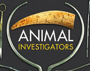 312x245animalinvestigators-hardcover