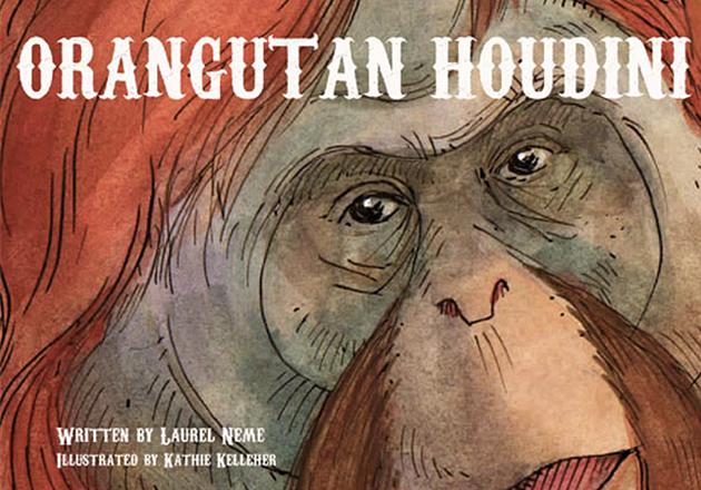 OrangutanHoudini630x440